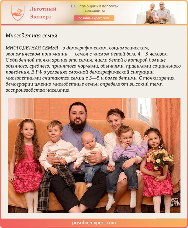 Понятие многодетная семья в российском праве
