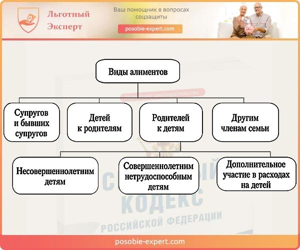 Изображение - Алименты с больничного листа порядок удержания и срок выплаты Vidy-alimentov