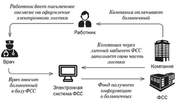 Схема работы с электронным больничным