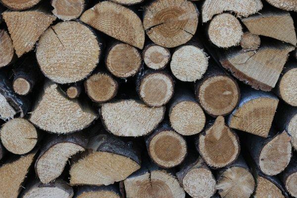 Отапливание дома твердым топливом предполагает компенсацию стоимости дров