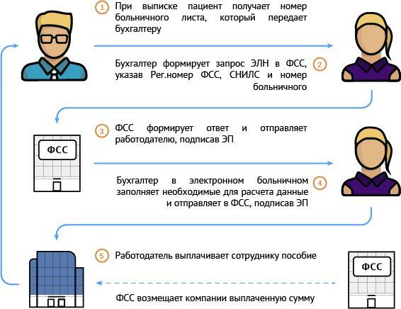 Схема работы с больничными листами