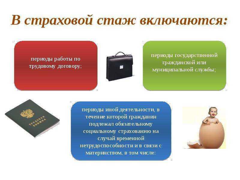 Составные элементы страхового стажа