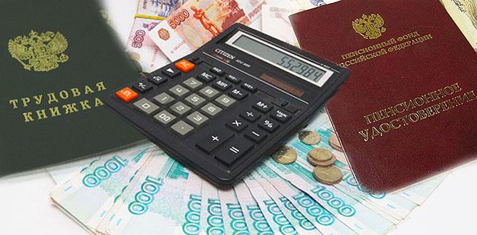 Заявление на получение ЕСВ подкрепляется рядом необходимых документов