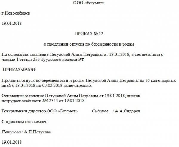 Заявление на предоставление отпуска по БИР
