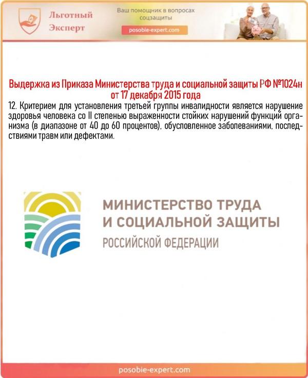 Выдержка из Приказа Министерства труда и социальной защиты РФ №1024н от 17 декабря 2015 года