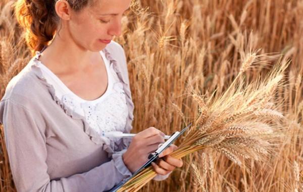 Молодой специалист при участии в программе должен проработать не менее 5 лет в сельской местности