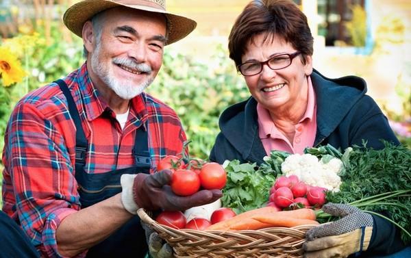 Актуальны в Испании вакансии, связанные с работой в сфере сельского хозяйства