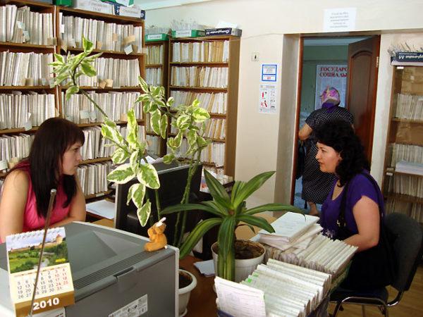 Оформление пособий в отделе социальных выплат
