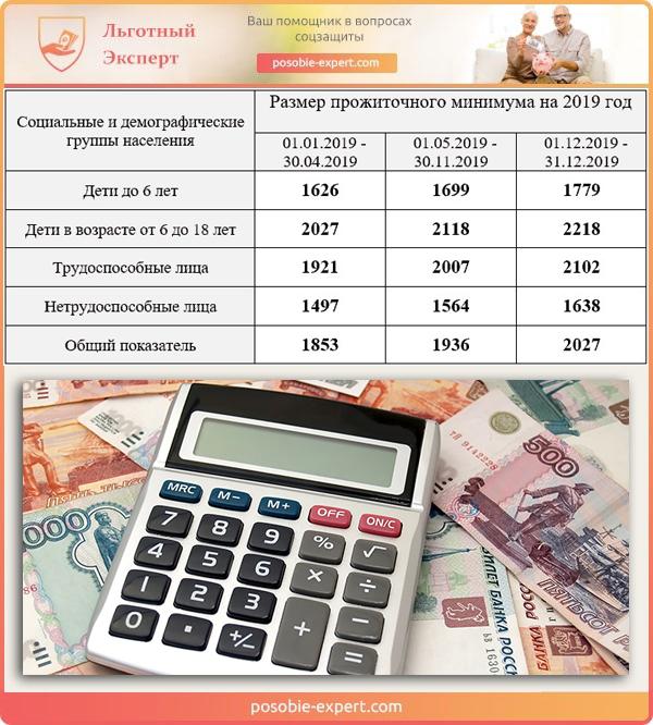 Размер прожиточного минимума на 2019 год